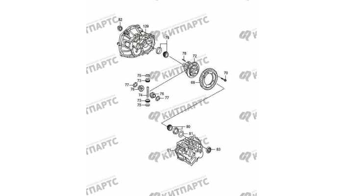 (MT) differential mechanism sub-assembly FAW Oley